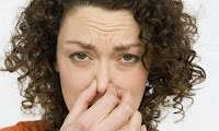when selling your home get rid of smells